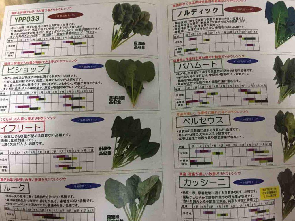 ほうれん草の新品種の名前が強そうな件wwwwwwwww